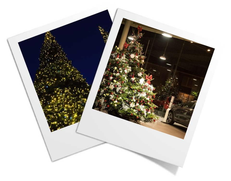 kerstdecoratie voor bedrijven