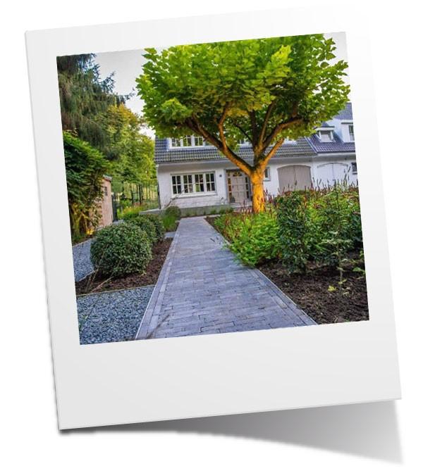 Beautanic tuinarchitectuur
